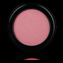 Makeup Brush 10S