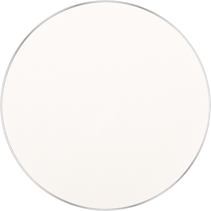Freedom System Mattifying Pressed Powder NF 301